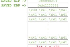 Binary Exploitation 102