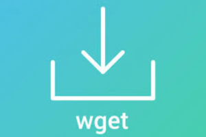 Wget Command in Linux