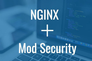 Nginx with ModSecurity