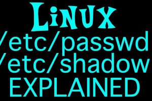 shadow & passwd files