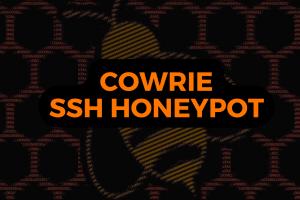 Cowrie SSH HoneyPot